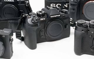 Рейтинг беззеркальных фотоаппаратов 2018 года: лучшие модели от лучших производителей
