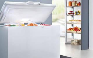 Как выбрать лучший морозильный ларь для дома по характеристикам