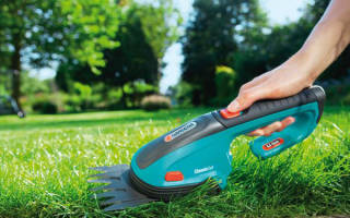 Как правильно стричь газон газонокосилкой: можно ли косить мокрую или высокую траву