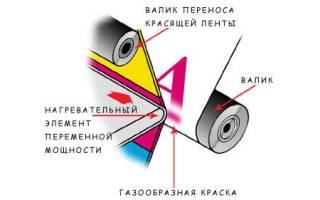 Сублимационный принтер: принцип работы, применение, плюсы и минусы, лучшие модели по отзывам