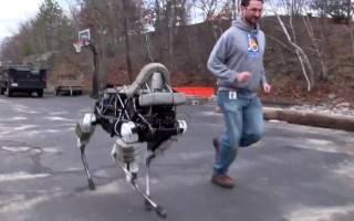 Британскими инженерами изобретены роботы-тараканы
