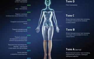 Создана система «искусственного тела человека»